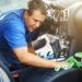 DIY Car Detail Supplies You Need